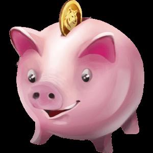 Sparschwein des Naloru-Netzwerks